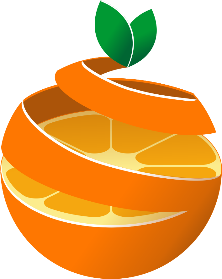 橙子(广州)大健康科技有限公司